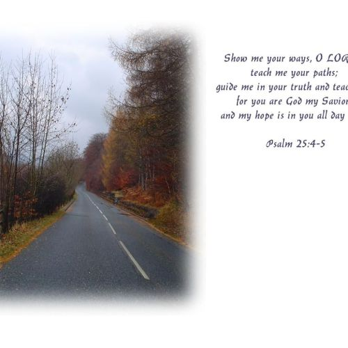 Psalm 25:4-5 christian wallpaper free download. Use on PC, Mac, Android, iPhone or any device you like.