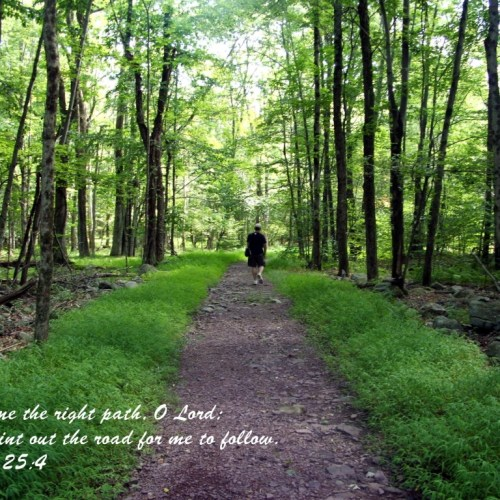 Psalm 25:4 christian wallpaper free download. Use on PC, Mac, Android, iPhone or any device you like.