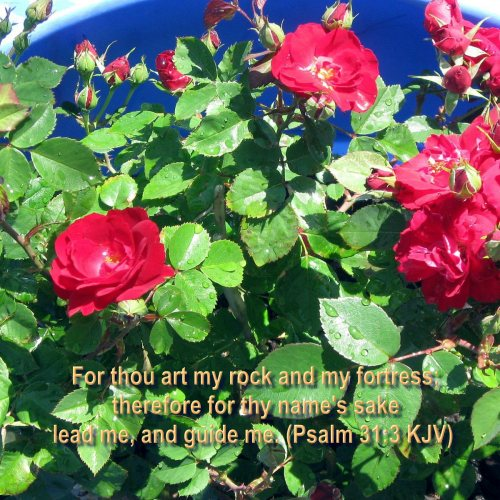 Psalm 31:3 and Flowers christian wallpaper free download. Use on PC, Mac, Android, iPhone or any device you like.