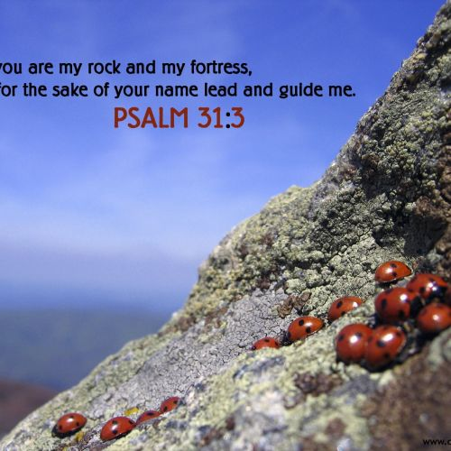 Psalm 31:3 christian wallpaper free download. Use on PC, Mac, Android, iPhone or any device you like.
