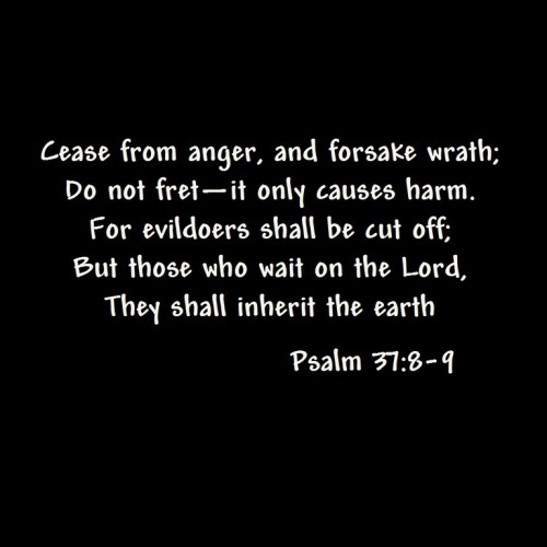 Psalm 37 8-9 christian wallpaper free download. Use on PC, Mac, Android, iPhone or any device you like.