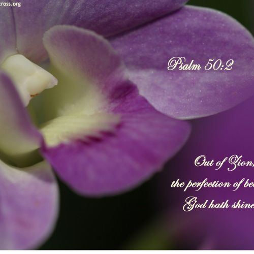 Psalm 50:2 christian wallpaper free download. Use on PC, Mac, Android, iPhone or any device you like.