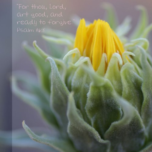 Psalm 86:5 christian wallpaper free download. Use on PC, Mac, Android, iPhone or any device you like.