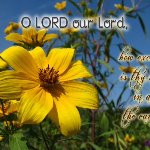Psalm 8:9 christian wallpaper free download. Use on PC, Mac, Android, iPhone or any device you like.
