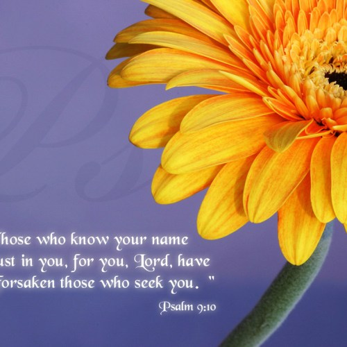 Psalm 9:10 christian wallpaper free download. Use on PC, Mac, Android, iPhone or any device you like.