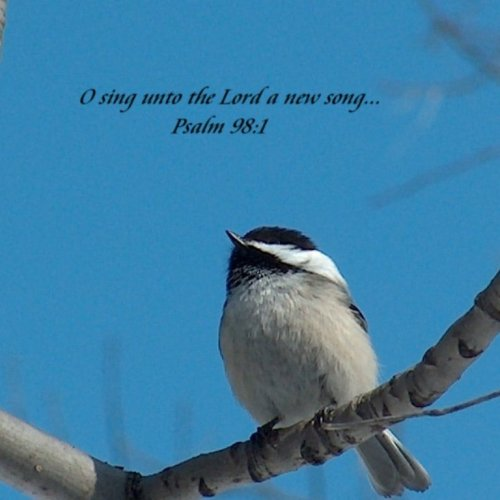 Psalm 98:1 christian wallpaper free download. Use on PC, Mac, Android, iPhone or any device you like.