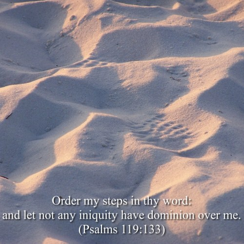 Psalms 119:133 christian wallpaper free download. Use on PC, Mac, Android, iPhone or any device you like.