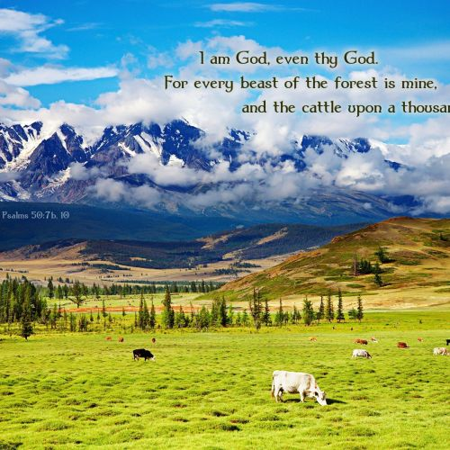 Psalms 50:7b-10 christian wallpaper free download. Use on PC, Mac, Android, iPhone or any device you like.