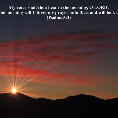 Psalms 5:3 christian wallpaper free download. Use on PC, Mac, Android, iPhone or any device you like.