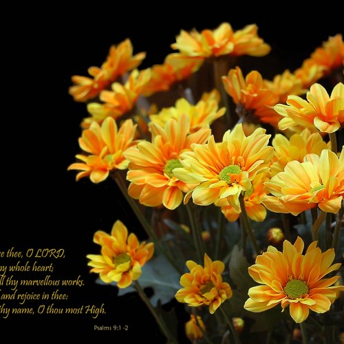 Psalms 9:1-2 christian wallpaper free download. Use on PC, Mac, Android, iPhone or any device you like.