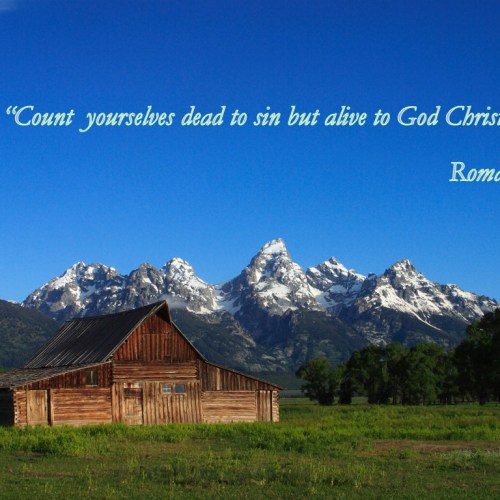 Romans 6:11 christian wallpaper free download. Use on PC, Mac, Android, iPhone or any device you like.