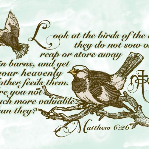 Sparrow christian wallpaper free download. Use on PC, Mac, Android, iPhone or any device you like.