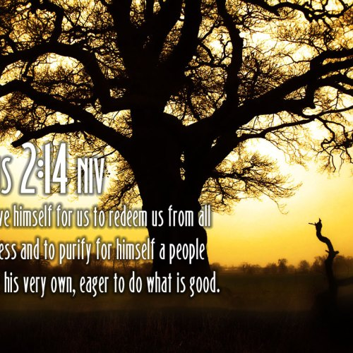 Titus 2:14 christian wallpaper free download. Use on PC, Mac, Android, iPhone or any device you like.