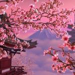 Cherry Aesthetic Desktop Wallpapers Top Free Cherry Aesthetic Desktop Backgrounds Wallpaperaccess