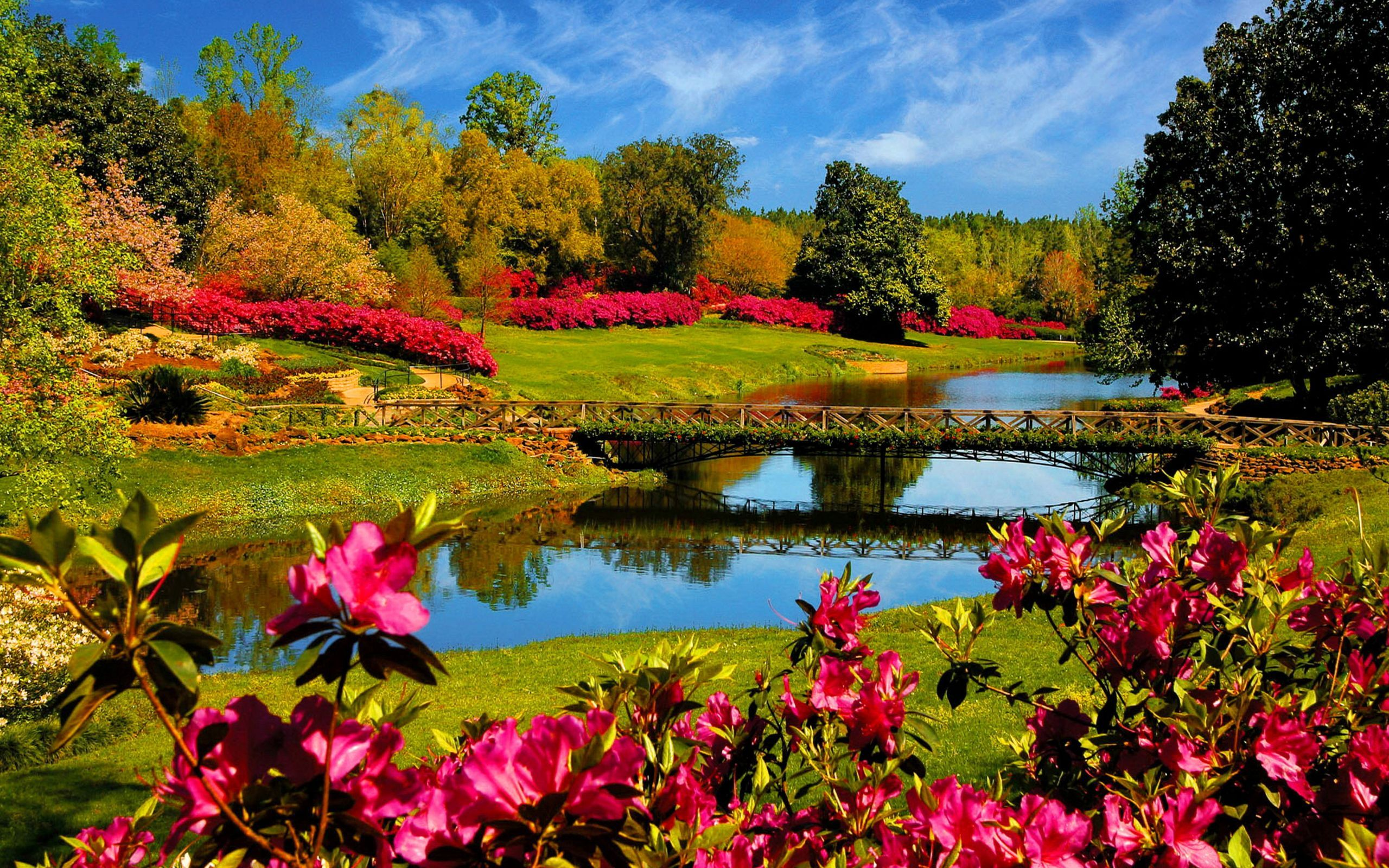 wallpapers Spring Scenery Wallpaper beautiful spring landscape wallpapers