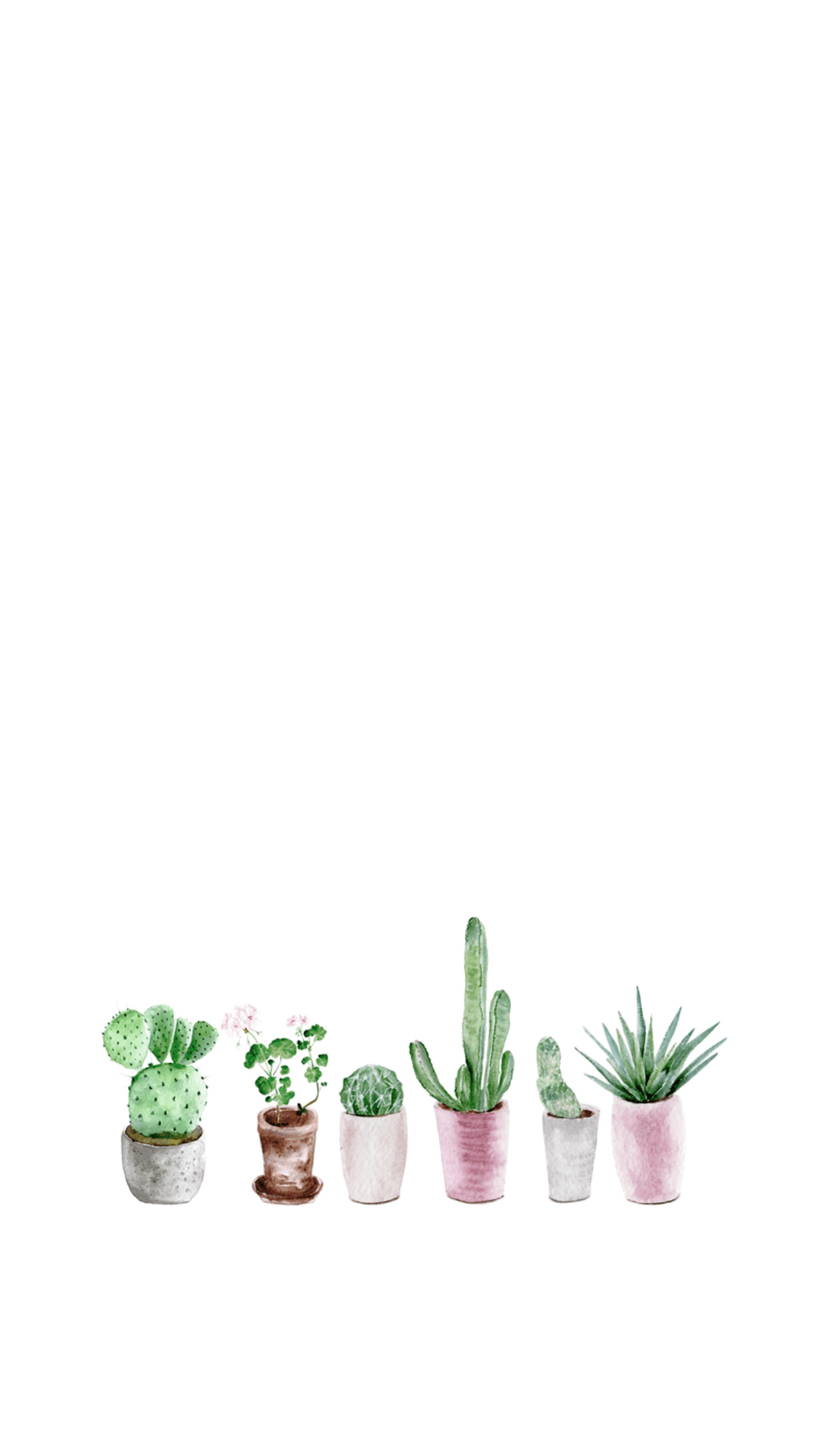 Aesthetic Cactus Wallpaper : aesthetic, cactus, wallpaper, Aesthetic, Cactus, Wallpapers, Backgrounds, WallpaperAccess