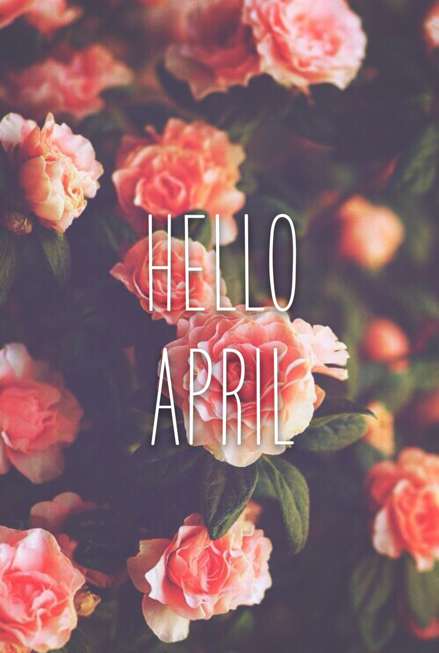 Vulgar Quotes Wallpapers Hello April Wallpapers Top Free Hello April Backgrounds