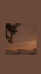Light Brown Brown Aesthetic Background