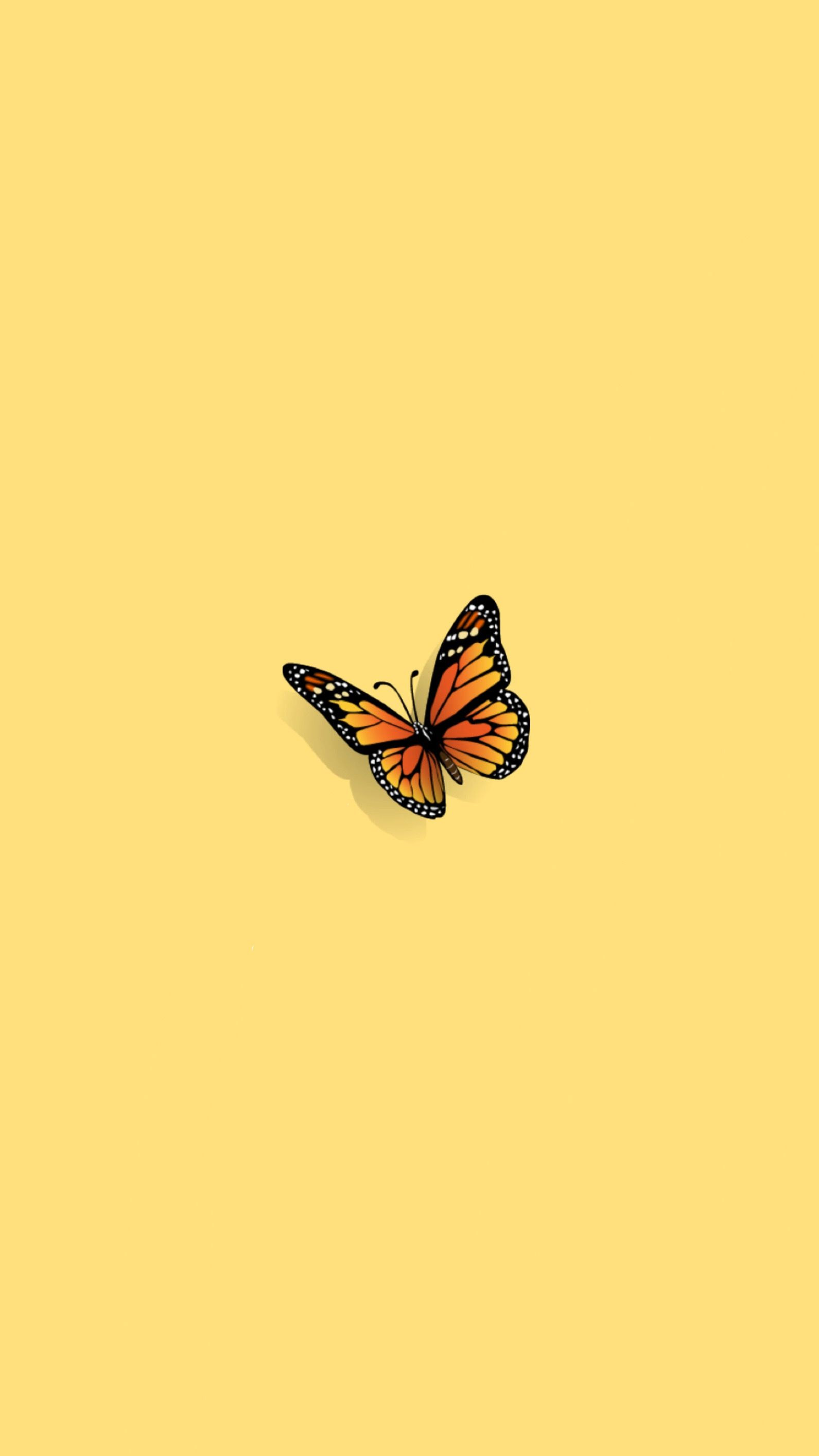 Aesthetic Butterfly Wallpaper Laptop : aesthetic, butterfly, wallpaper, laptop, Aesthetic, Butterfly, Wallpaper, Laptop