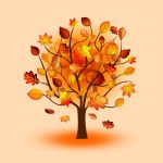 Fall Trees Wallpapers Top Free Fall Trees Backgrounds Wallpaperaccess