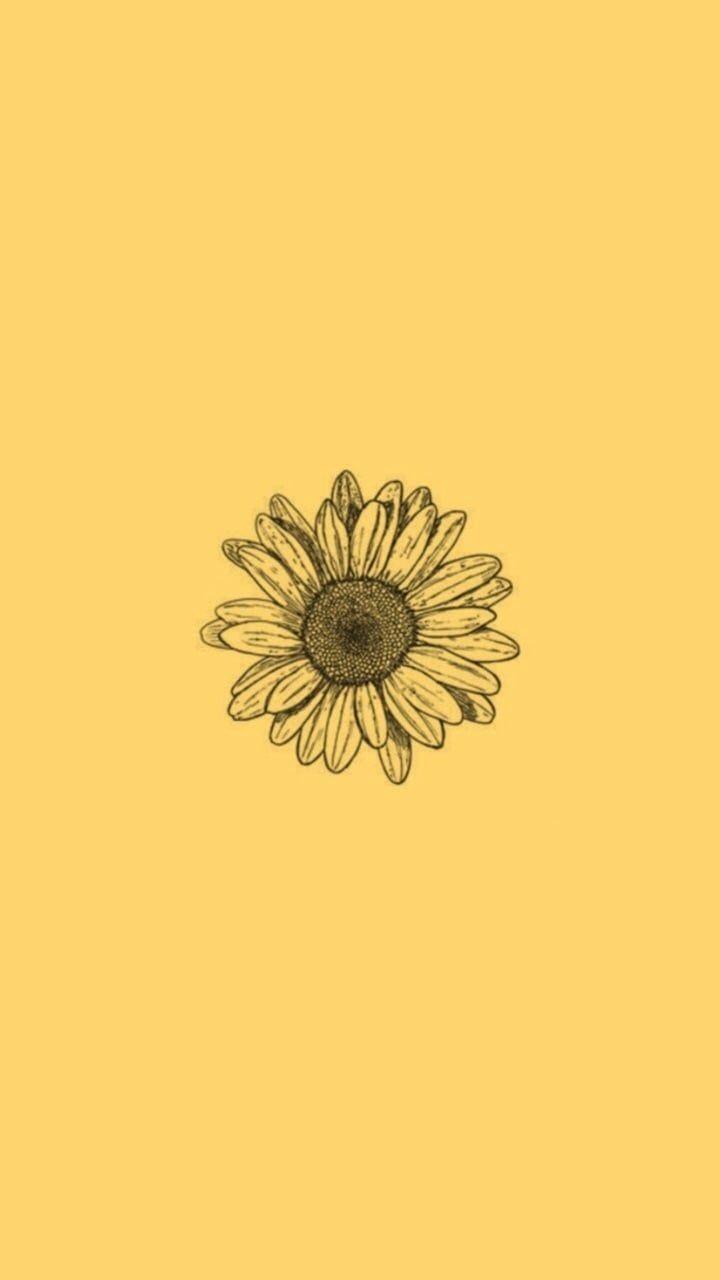 Sunflower Tumblr Background : sunflower, tumblr, background, Sunflower, Yellow, Tumblr, Aesthetic, Wallpapers, Backgrounds, WallpaperAccess