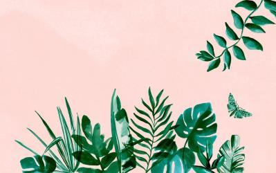 Pastel Aesthetic Minimalist Tumblr Desktop Wallpaper Hd