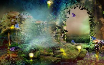 Enchanted Forest Fantasy Forest Background