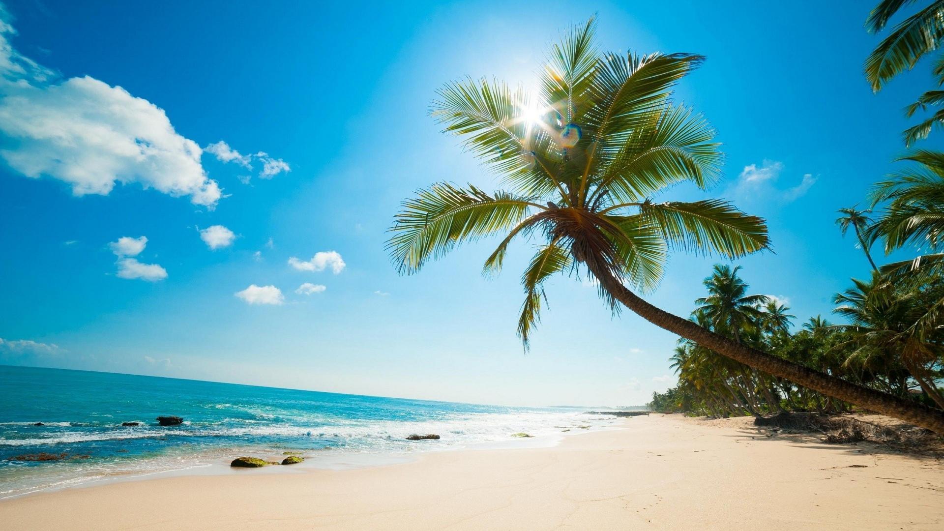 caribbean beach wallpapers top