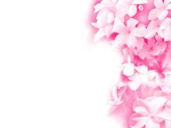 Cartoon Flower Wallpapers Top Free Cartoon Flower Backgrounds WallpaperAccess
