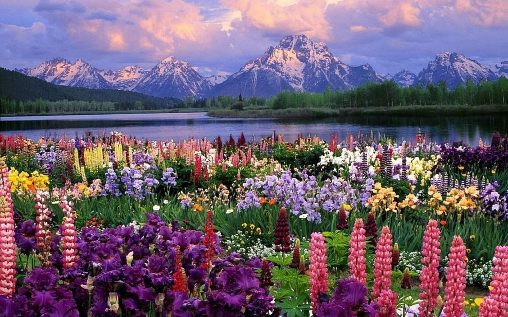picture Spring Scenery Wallpaper spring scenery wallpapers top free