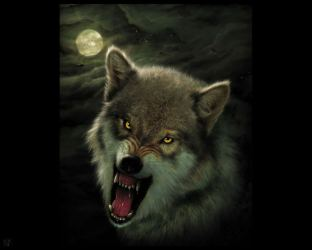 Evil Wolf Wallpapers Top Free Evil Wolf Backgrounds WallpaperAccess
