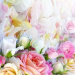 Light Pink Floral Iphone Wallpapers Top Free Light Pink Floral Iphone Backgrounds Wallpaperaccess