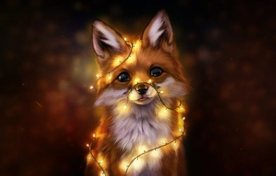 Anime Fox Wallpapers Top Free Anime Fox Backgrounds WallpaperAccess