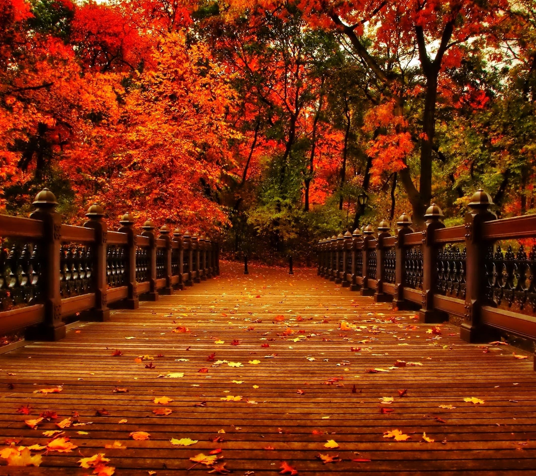 Creating aesthetics pictures is an art that you can master by following a set of. Fall Aesthetic Wallpapers - Top Free Fall Aesthetic ...