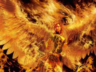 Golden Phoenix Wallpapers Top Free Golden Phoenix Backgrounds WallpaperAccess