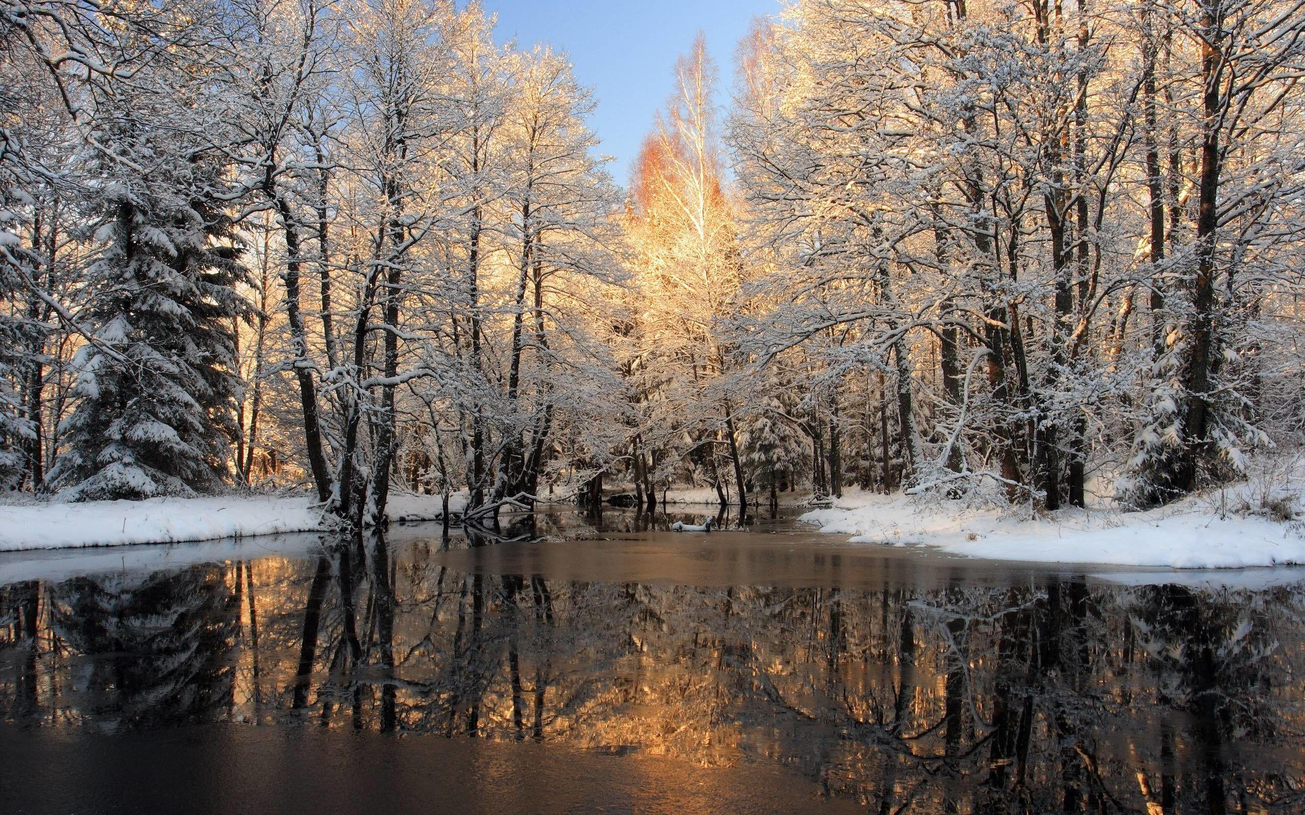 winter nature wallpapers top