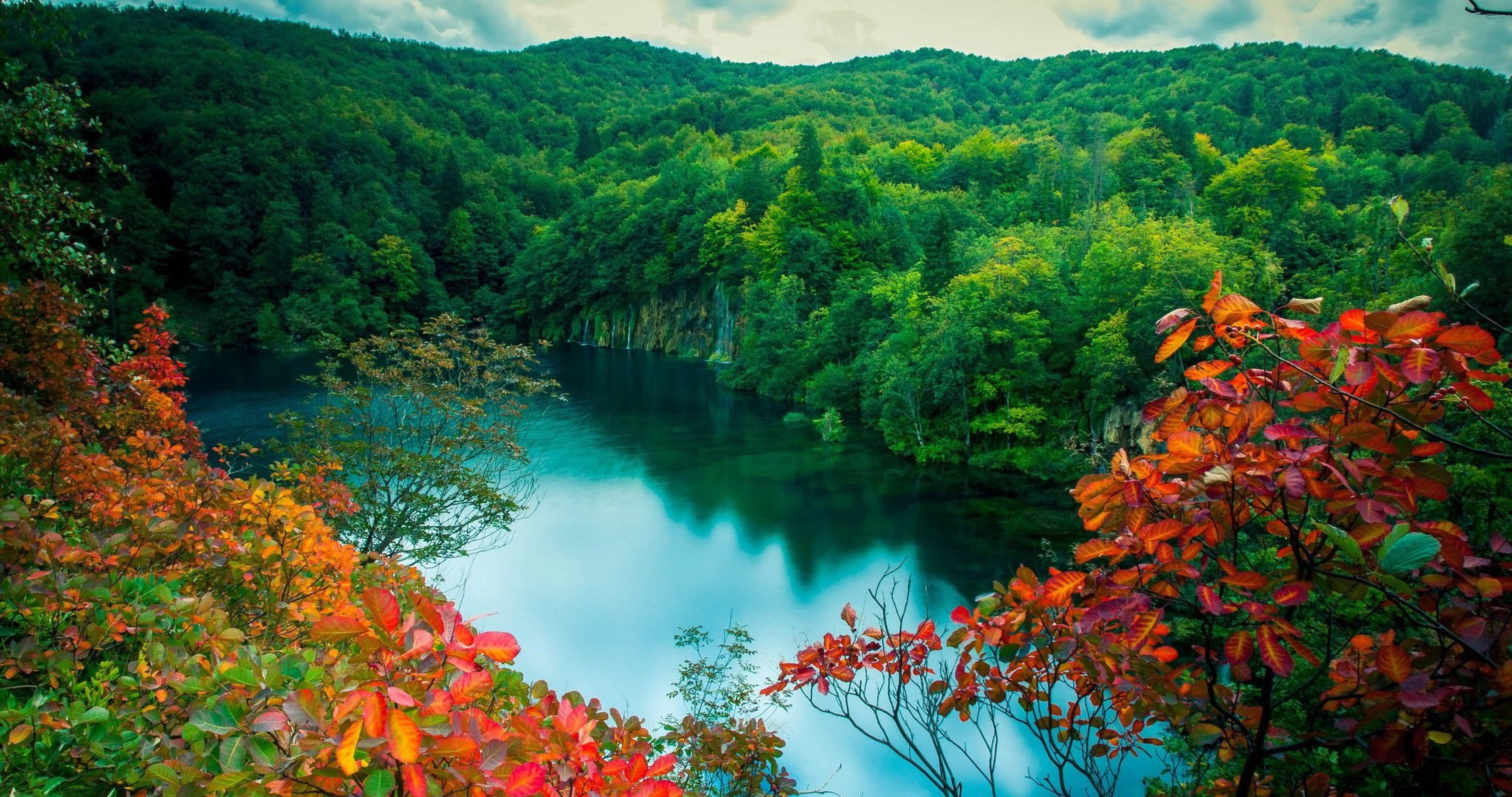 Fall Birch Tree Wallpaper Poland Landscape Wallpapers Top Free Poland Landscape