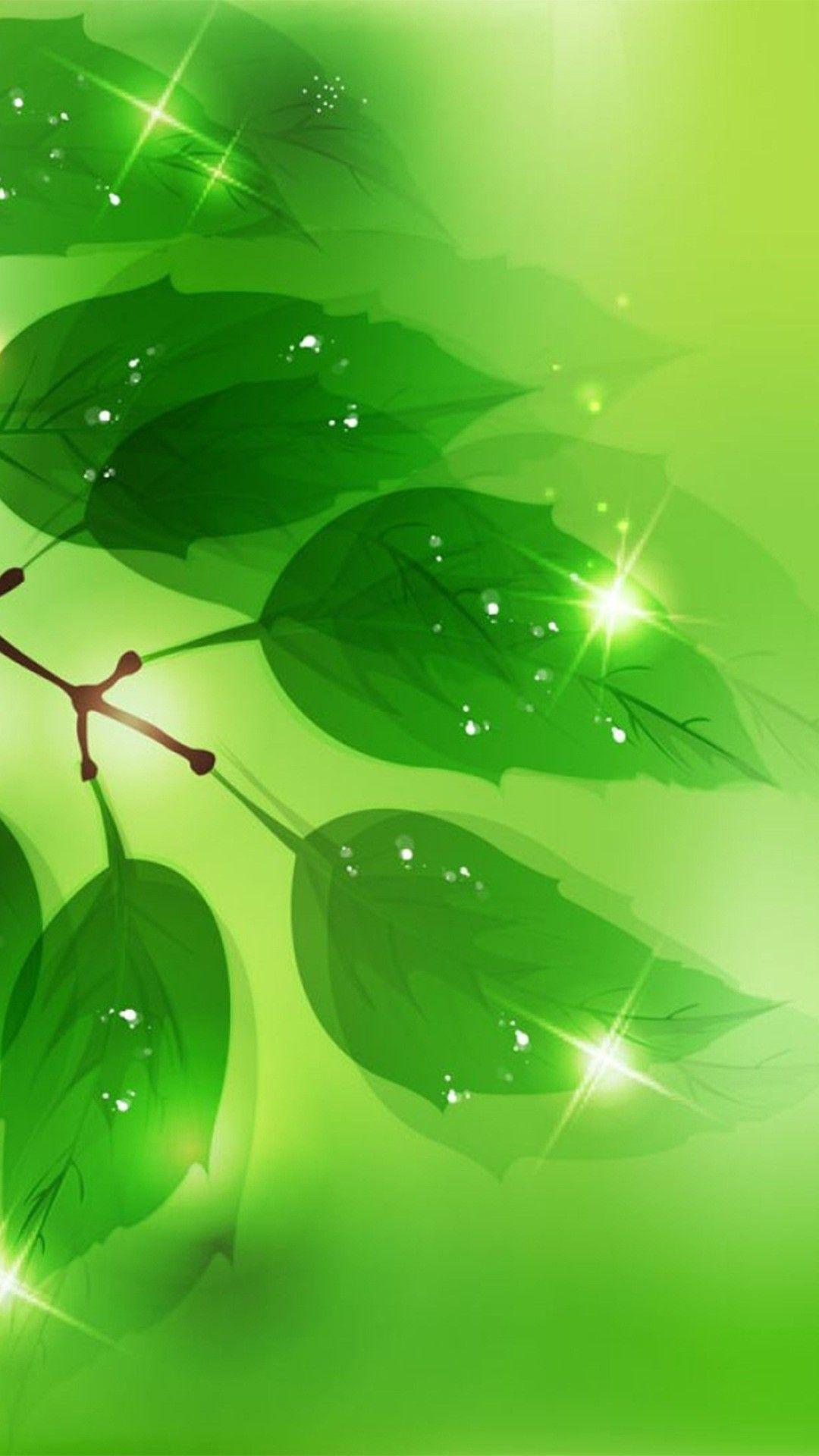 Background Hijau Islami : background, hijau, islami, Hijau, Wallpapers, Backgrounds, WallpaperAccess