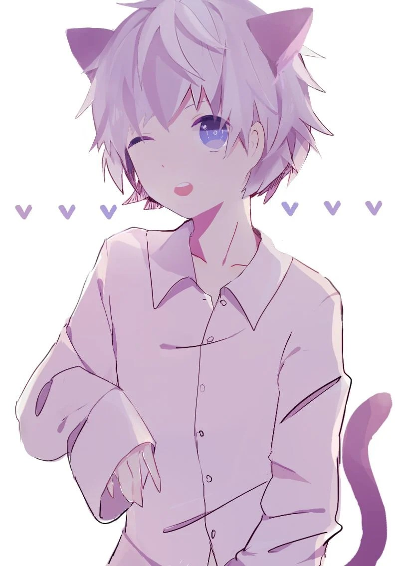 Cat Boys Anime : anime, Anime, Wallpapers, Backgrounds, WallpaperAccess