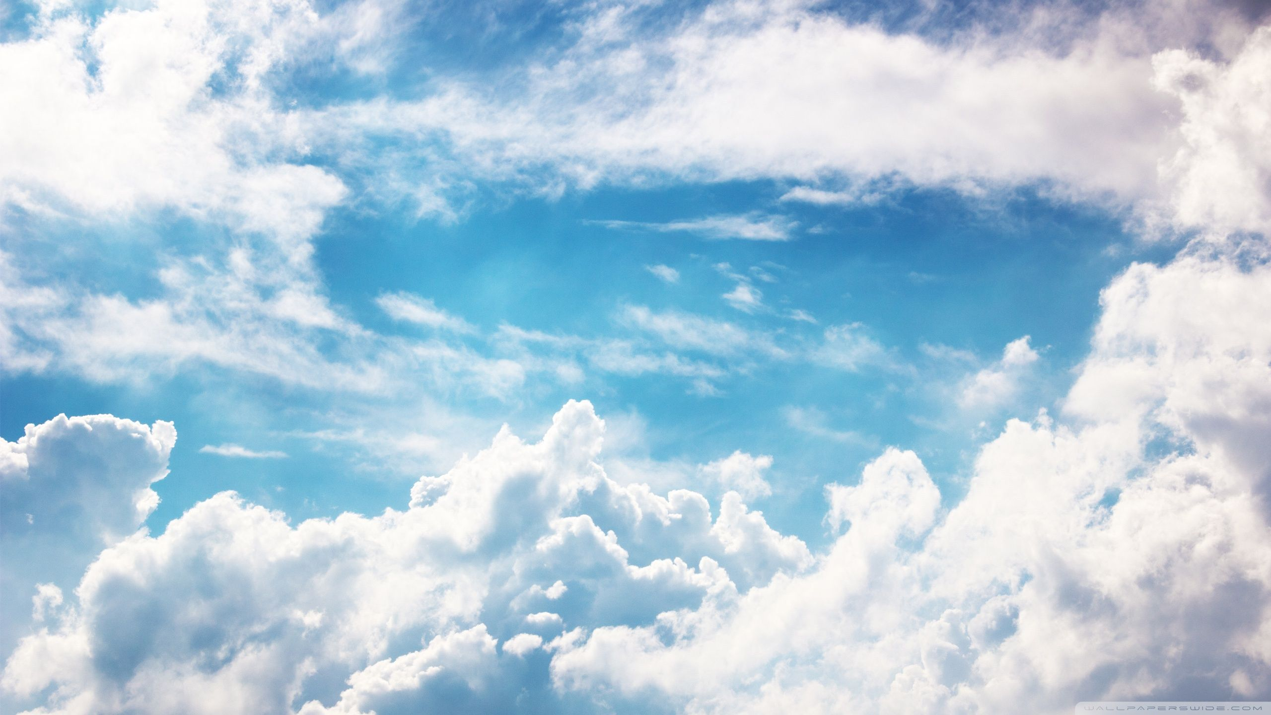 Access cherish.artmodeling-studios.net. Top sky