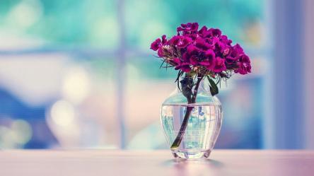 Beautiful HD Wallpapers Top Free Beautiful HD Backgrounds WallpaperAccess