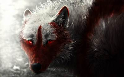 Creepy Wolf Wallpapers Top Free Creepy Wolf Backgrounds WallpaperAccess