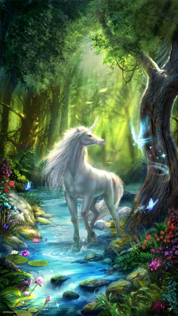 Unicorns And Fairies Wallpapers - Top Free Backgrounds Wallpaperaccess