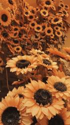 Iphone Brown Aesthetic Wallpaper