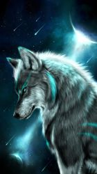 Spirit Wolf iPhone Wallpapers Top Free Spirit Wolf iPhone Backgrounds WallpaperAccess