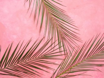 pastel aesthetic laptop pink backgrounds wallpapers wallpaperaccess
