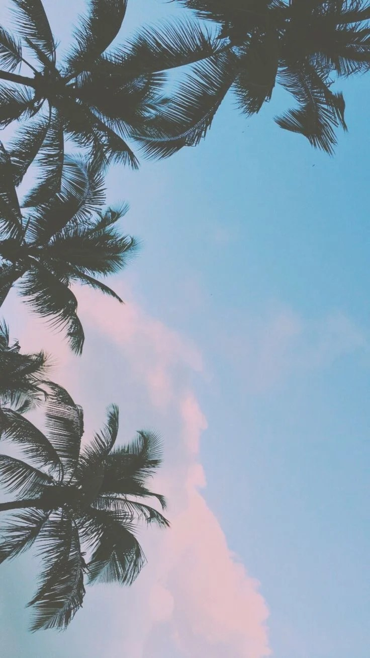 Cute Aesthetic Wallpapers For Ipad : aesthetic, wallpapers, Tumblr, Wallpapers, Backgrounds, WallpaperAccess