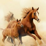 Girly Horse Wallpapers Top Free Girly Horse Backgrounds Wallpaperaccess