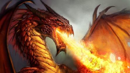 Fire Dragon Wallpapers Top Free Fire Dragon Backgrounds WallpaperAccess