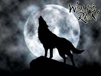 Black Wolf Howling Wallpapers Top Free Black Wolf Howling Backgrounds WallpaperAccess